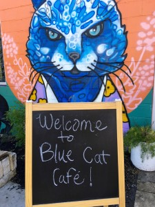 Blue Cat Cafe in Austin, Texas. Part funky coffee shop and part cat rescue.