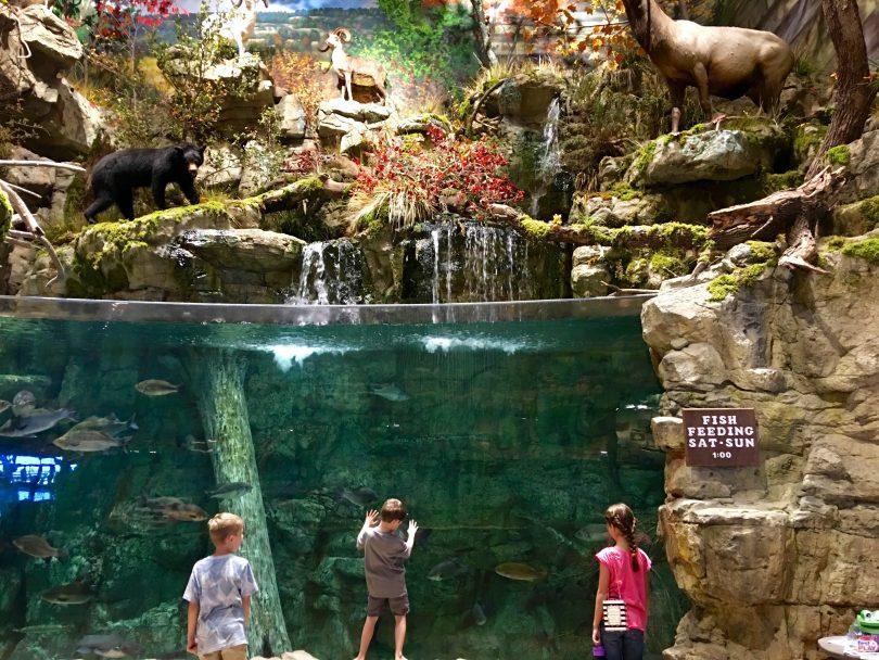 Bass Pro Shops And Bowling Cedar Park Texas Living