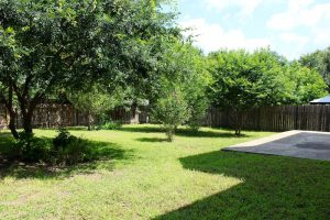 Cedar Park Rental 1807 Lion Heart Dr