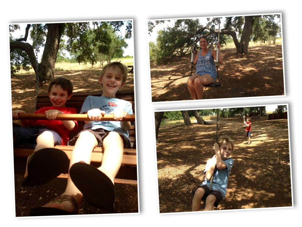 Jadybrid Johnson Wildflower Park Swings