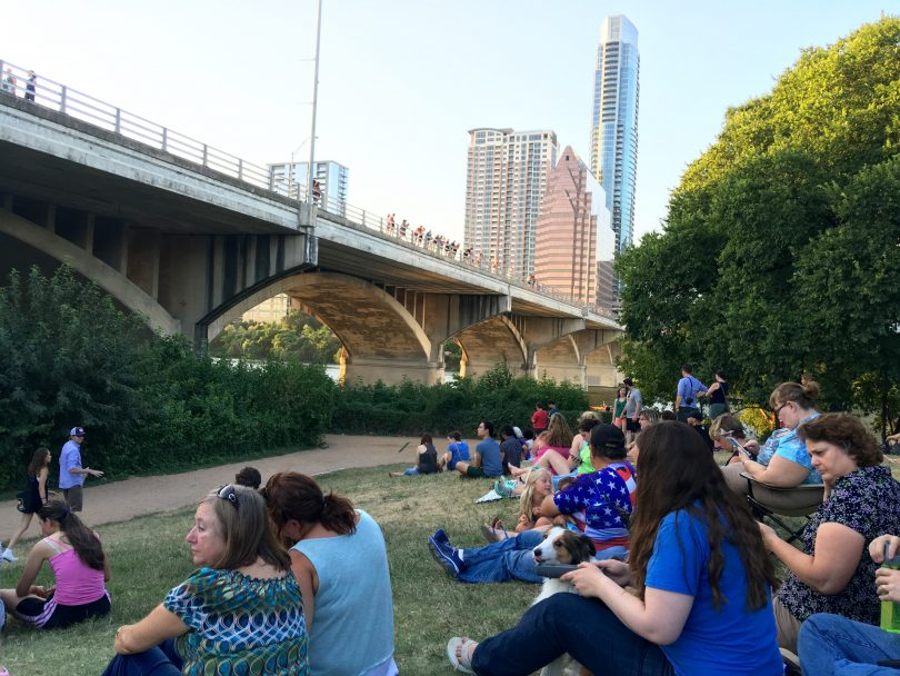 Bat viewing under Congress Avenue Bridge.
