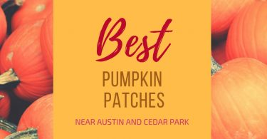 Pumpkin Patches around Austin