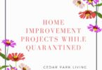 Home Improvement Projects While Quarantined